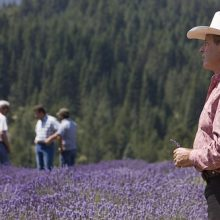Gary Young at lavender farm in St. Maries, Idaho
